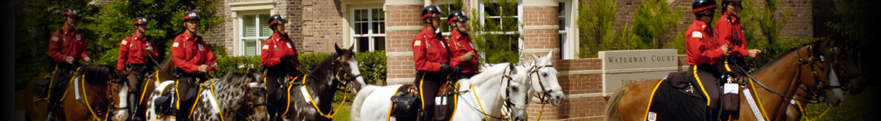 Mounted Patrol Riders and Horses