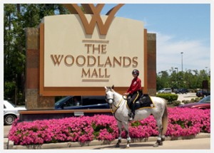 Mounted Patrol at The Woodlands