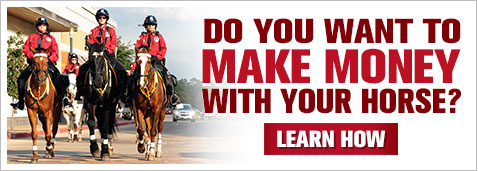 Do You Want To Make Money With Your Horse?